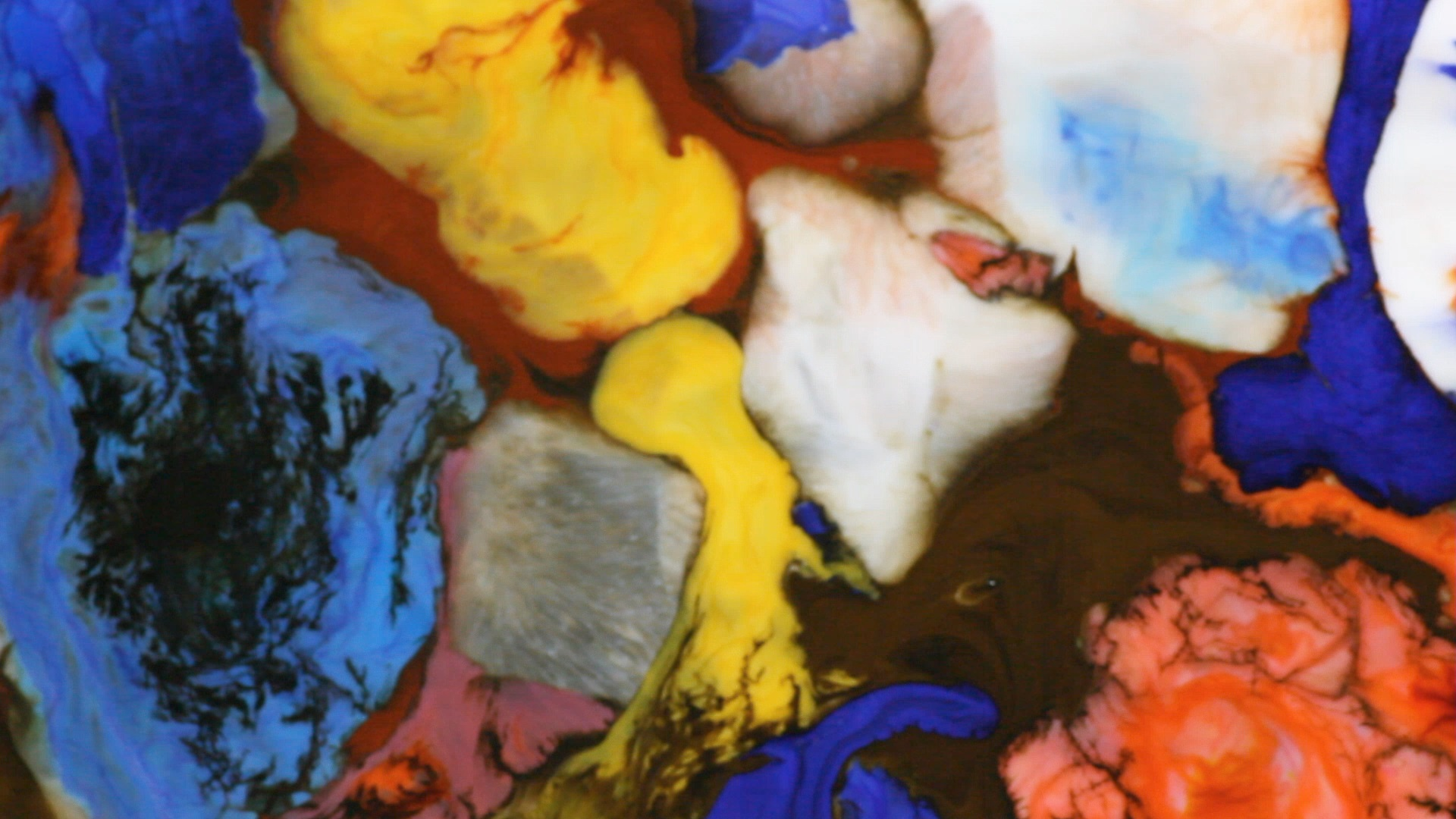 art, contemporary, food, liquid painting